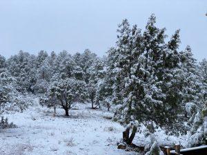 New Mexico snow fall